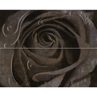 Look Decor Rosa-2 Grafito