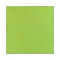 Turin Verde